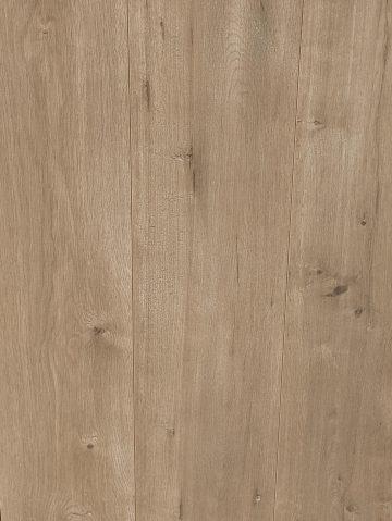 Settlers Pine