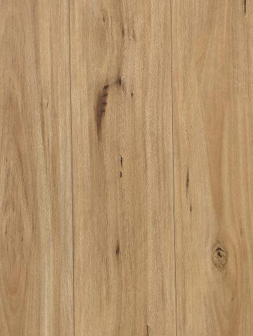 12 mm laminate Tasmanian Blackbutt